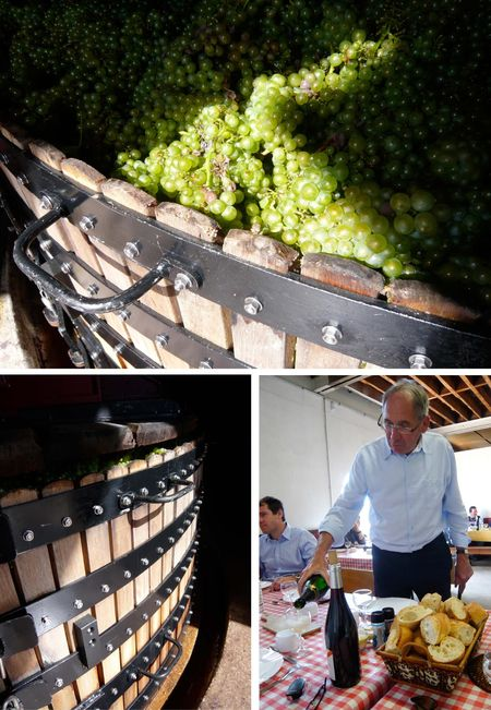 Champagne vineyards, vendanges, grape, France, travel (via Mytinerary blog Detours)