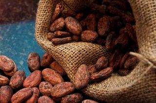 Cacao beans, chocolate tour (via Mytinerary blog Detours)