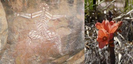 Kakadu National Park, Australia 2